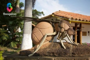 Ant statue in Barichara Colombia Boogaloo Travel